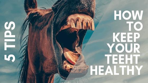 5 tips how to keep your teeth healthy